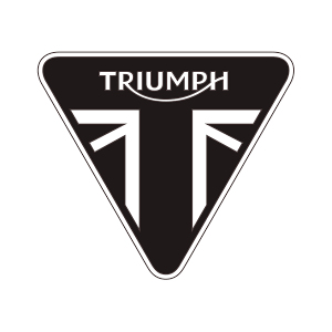 TRIUMPH GBRACING PRODUCTS